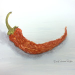 dried-pepper