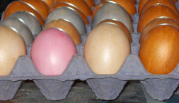 eggs coated with liquid polymer clay